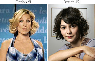 erica_options1.jpg