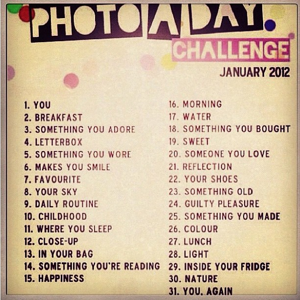 what is the instagram photo a day challenge for january